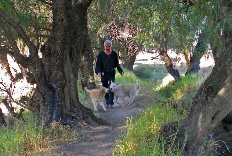 QUE POR TANTO CAMINAR… ¡CHALE!: MI CENTRO DE TRABAJO EN HUELGA Y YO TODO DADO AL CATRE