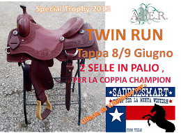 TWIN RUN 2013, CHE PREMI !!!