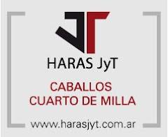 HARAS CUARTO MILLA