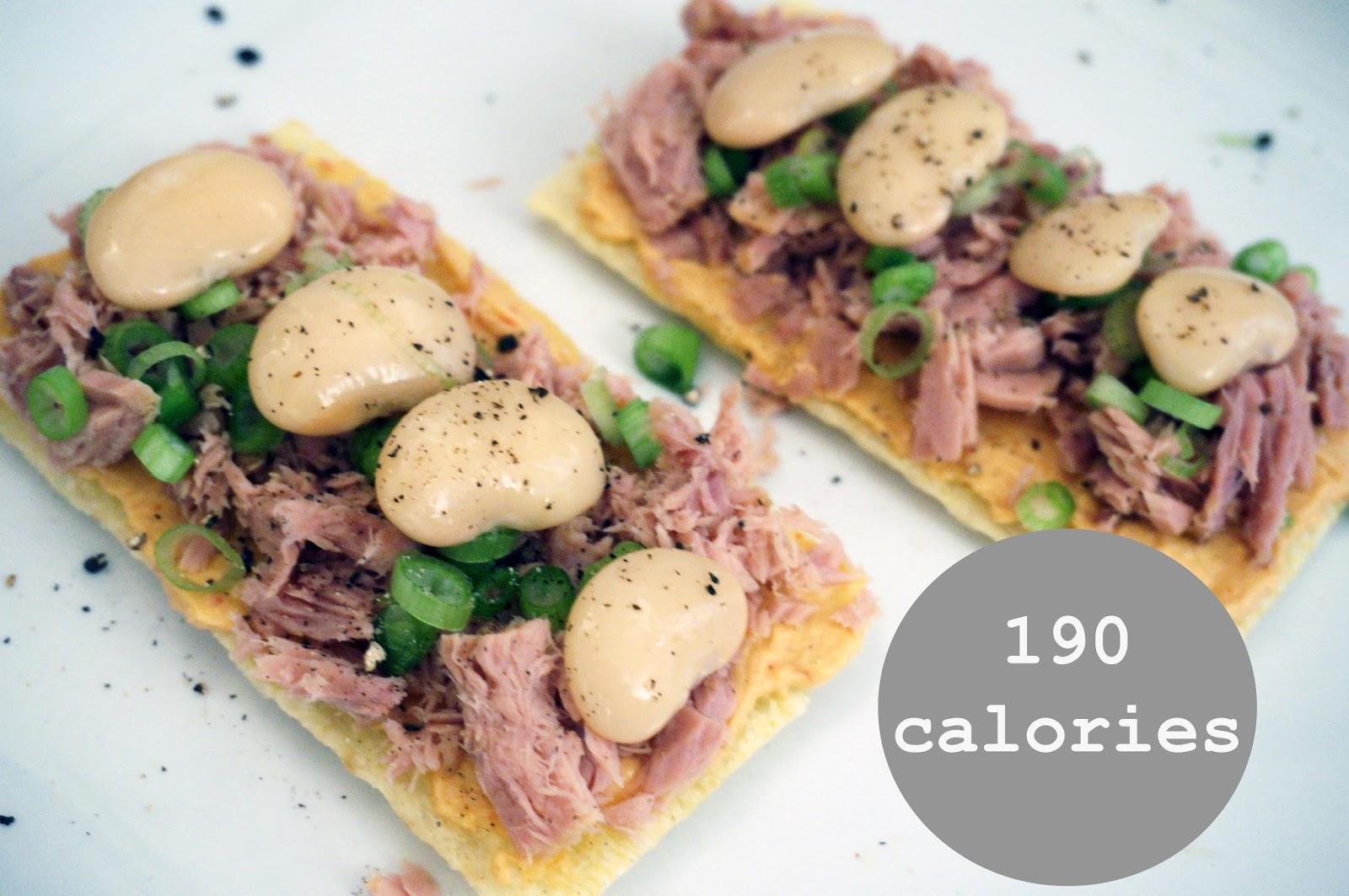 meg-made Fast Diet recipes - tuna crisbread