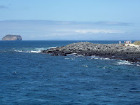 North Seymour Rugged Coastline in the Pacific Ocean
