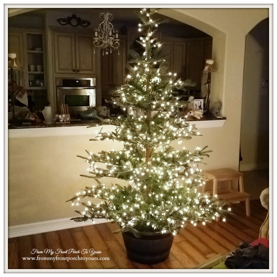 From My Front Porch To Yours: Let's Talk Christmas Trees- Our ...