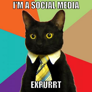 Social Media Cat Expurrt