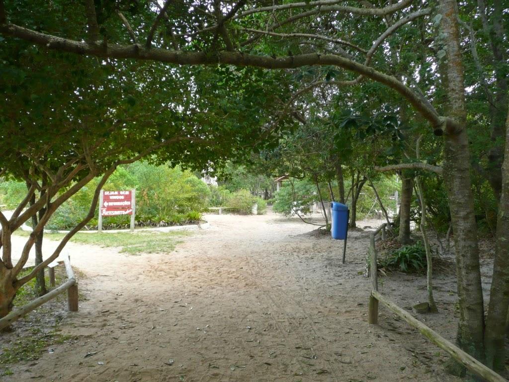 Parque da Lagoa do Peri possui três áreas distintas: #77903B 1024x768