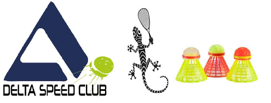 DELTA SPEED CLUB
