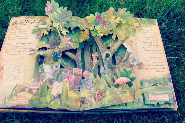 how to find flower fairies pop up book