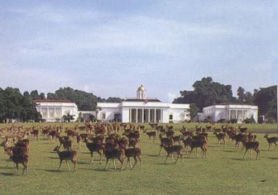 Profil istana Bogor