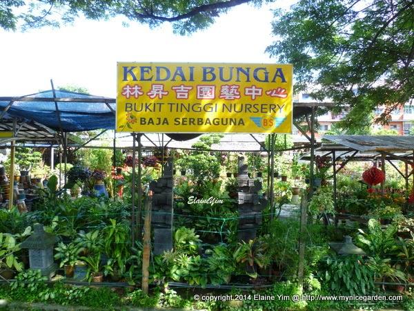 My Garden Directory   Reviews Of Plant Nurseries U0026 Garden Supplies:  Eco Friendly Klang Bukit Tinggi Nursery