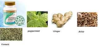 peppermint ginger plus benefit