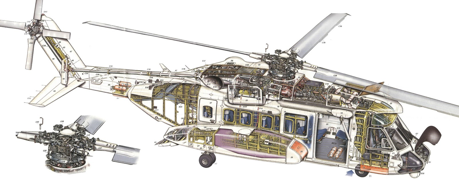 bell 47 tail rotor with Sikorsky S 92 on Black Hawk Made Peek Inside Sikorsky likewise Viewtopic together with GrimmjowreleasePanteraDesgarron besides 0419 additionally Sherman Gardens Coral Reef Succulent.