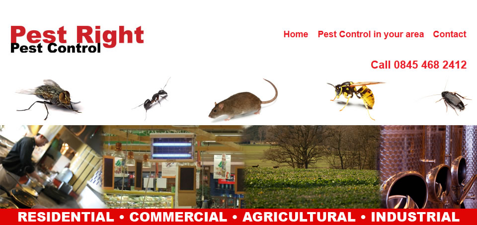 Pestright Blog