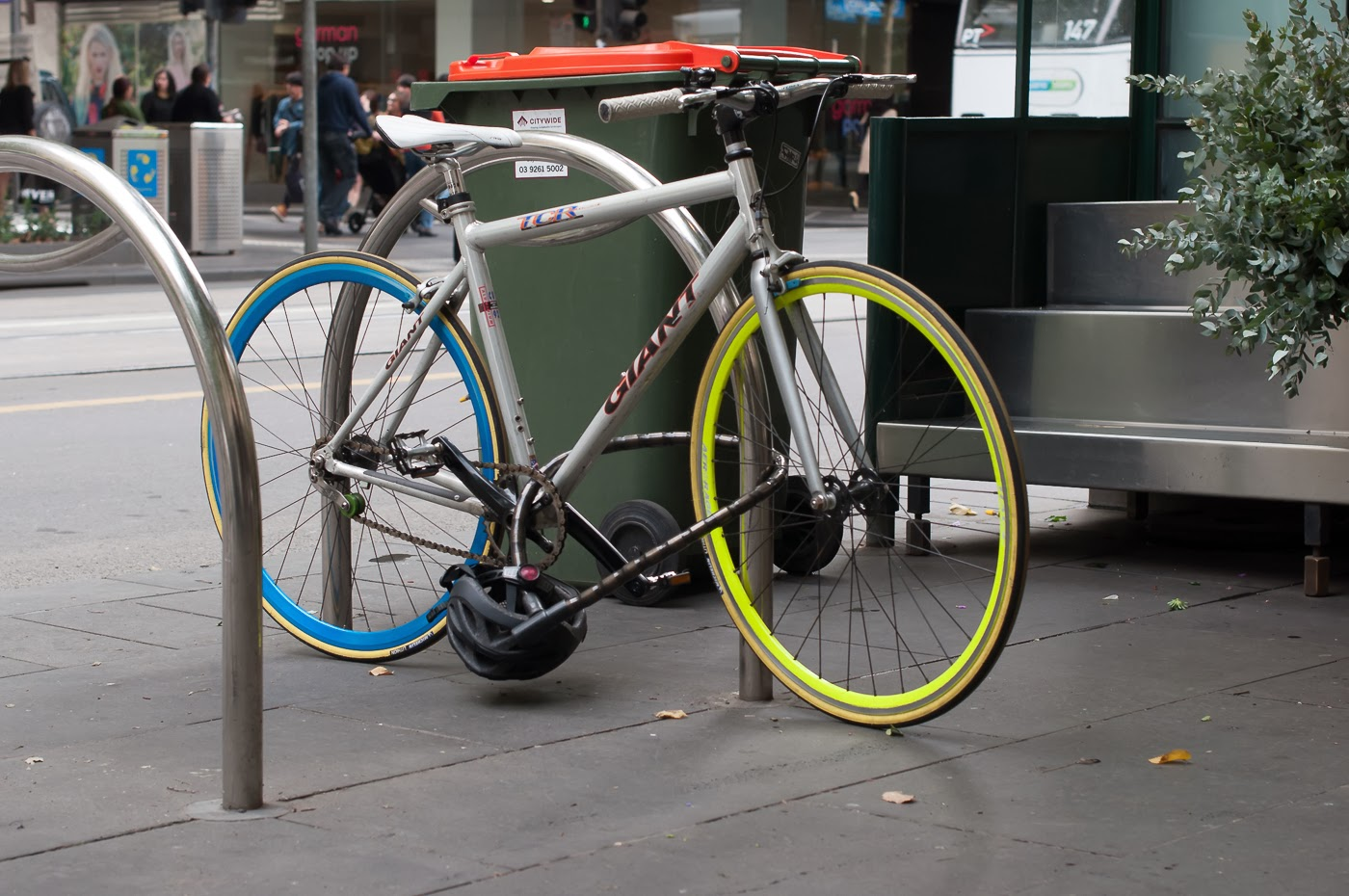 single speed, bike, bicycle, tim macauley, the biketorialist, melbourne, road bike, conversion,  custom, swanston St, giant, tcr,  frame