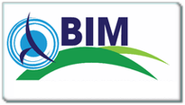Contributo BIM 2015