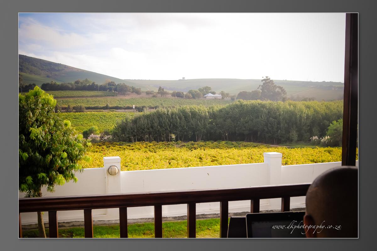 DK Photography DVD+slideshow-024 Cleo & Heinrich's Wedding in D'Aria, Durbanville  Cape Town Wedding photographer