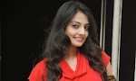 Nikitha Narayan photos at Ladies and Gentlemen Logo launch-thumbnail