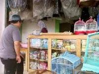 perlengkapan yang di butuhkan burung