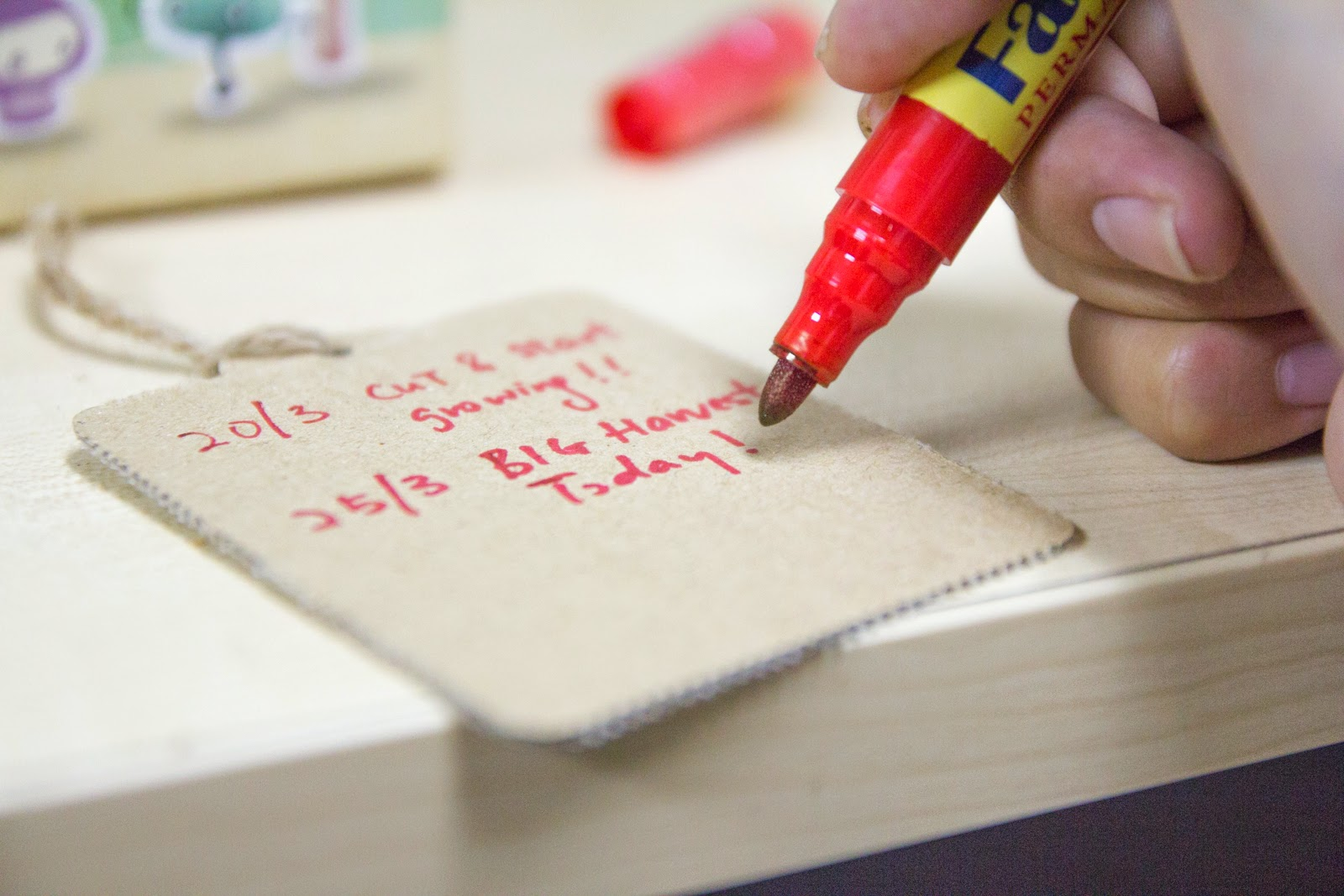 Moku Growing Diary