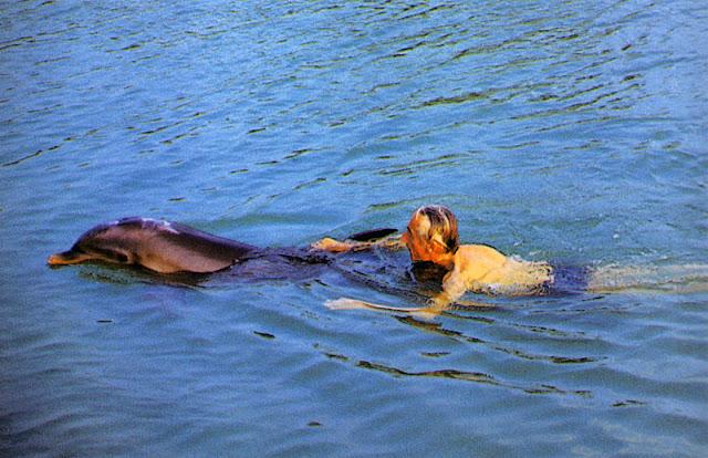 http://4.bp.blogspot.com/-b5n1tyadEOY/TgsYteazPcI/AAAAAAAABcg/ZcVkdbkI58k/s640/Jacques-Cousteau-Swimming.jpg
