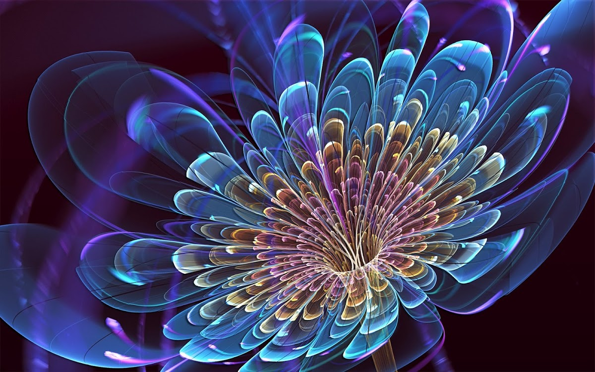 3d flower high resolution wallpapers free download ~ Fine ...