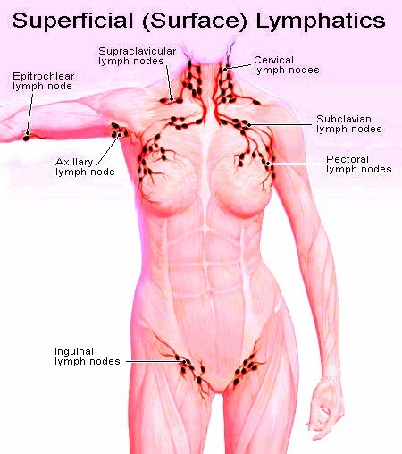 Diagrams swollen lymph nodes glands pictures swollen lymph nodes glands pictures ccuart Gallery