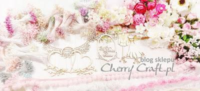 Blog sklepu - CherryCraft.pl