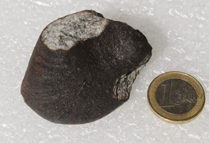 This is a section of the Annama meteorite. Credit: Jakub Haloda