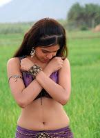 sheena, shahabadi, various, images