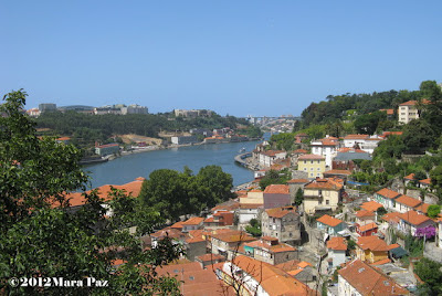 Rooftops and Douro River
