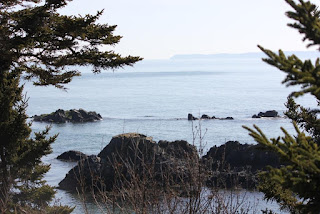 View from West Quoddy trail