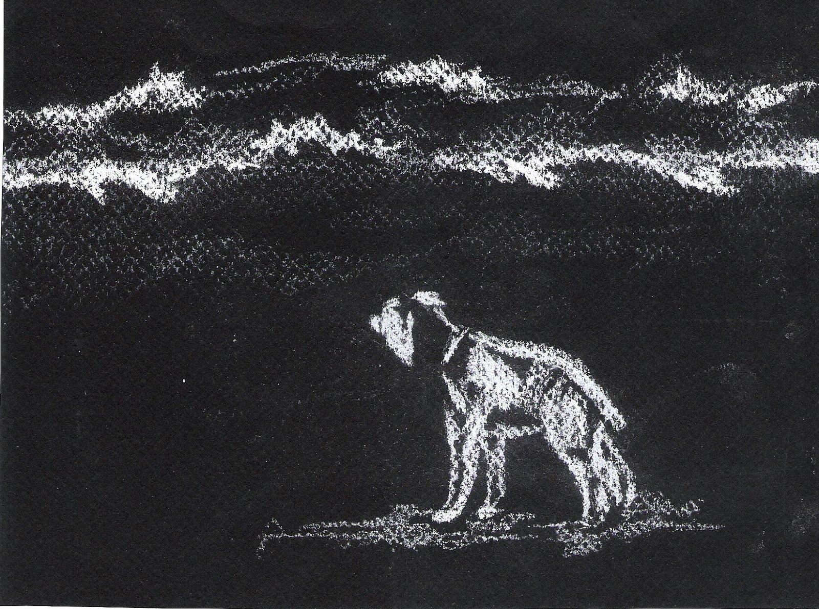 Ilustrado por Paloma Casado
