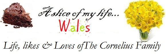 A Slice of My Life Wales