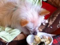 Chi having breakfast