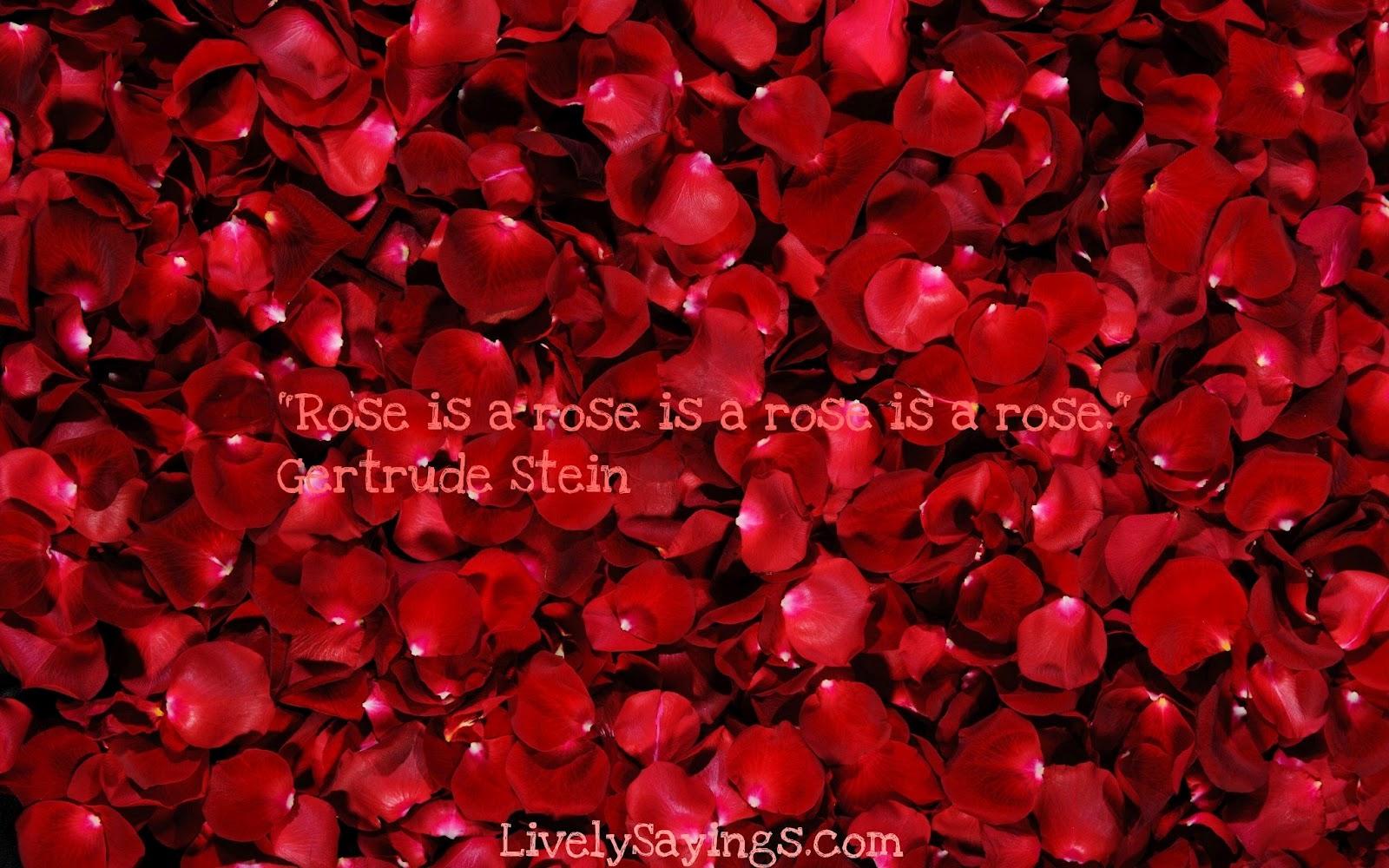http://4.bp.blogspot.com/-b7vS_TmZotU/T7-DD0LcUoI/AAAAAAAAAbk/cRY3tYxX-4s/s1600/rosepetals-299892.jpeg