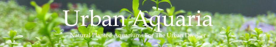 Urban Aquaria