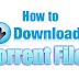 Best Method to Download Torrent Files