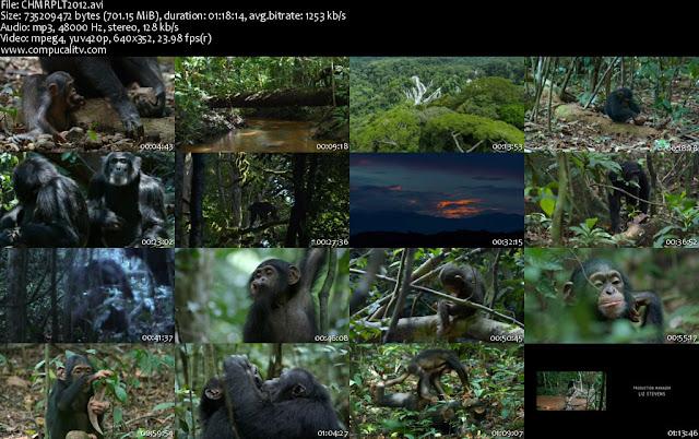 Chimpanzee DVDRip Español Latino Descargar 1 Link 2012