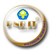 Logo PNB IT MI