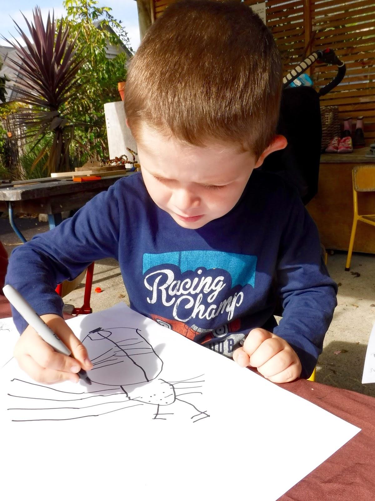 mairtown kindergarten nurturing a sense of wonder about spiders