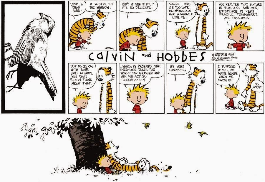 The Wisdom of Calvin & Hobbes