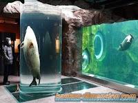 Eksplorasi Asahiyama Zoo