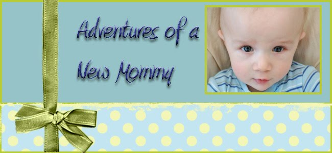 Adventures of a New Mommy