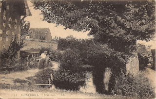 Jardin - Cheverny