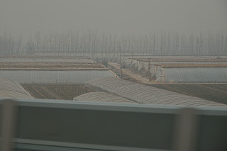 Greenhouses with insulation rolls in rural China