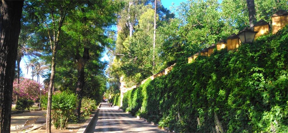 El deseo de volver la ciudad de sevilla bordeando su for Jardines de murillo