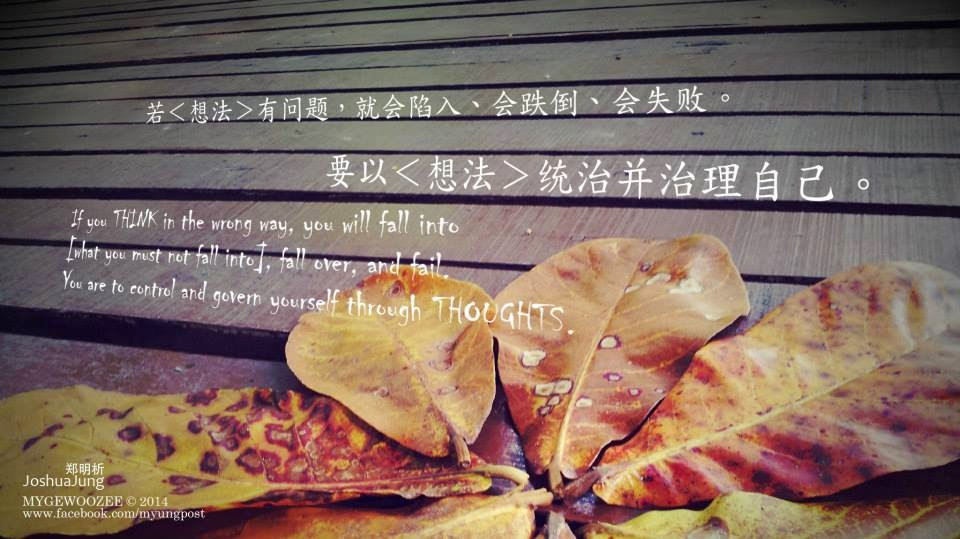 郑明析,摄理,月明洞,叶子,木板,想法,跌倒,失败,Joshua Jung, Providence, Wolmyeong Dong, leaves, wooden floor, fall, fail, thoughts