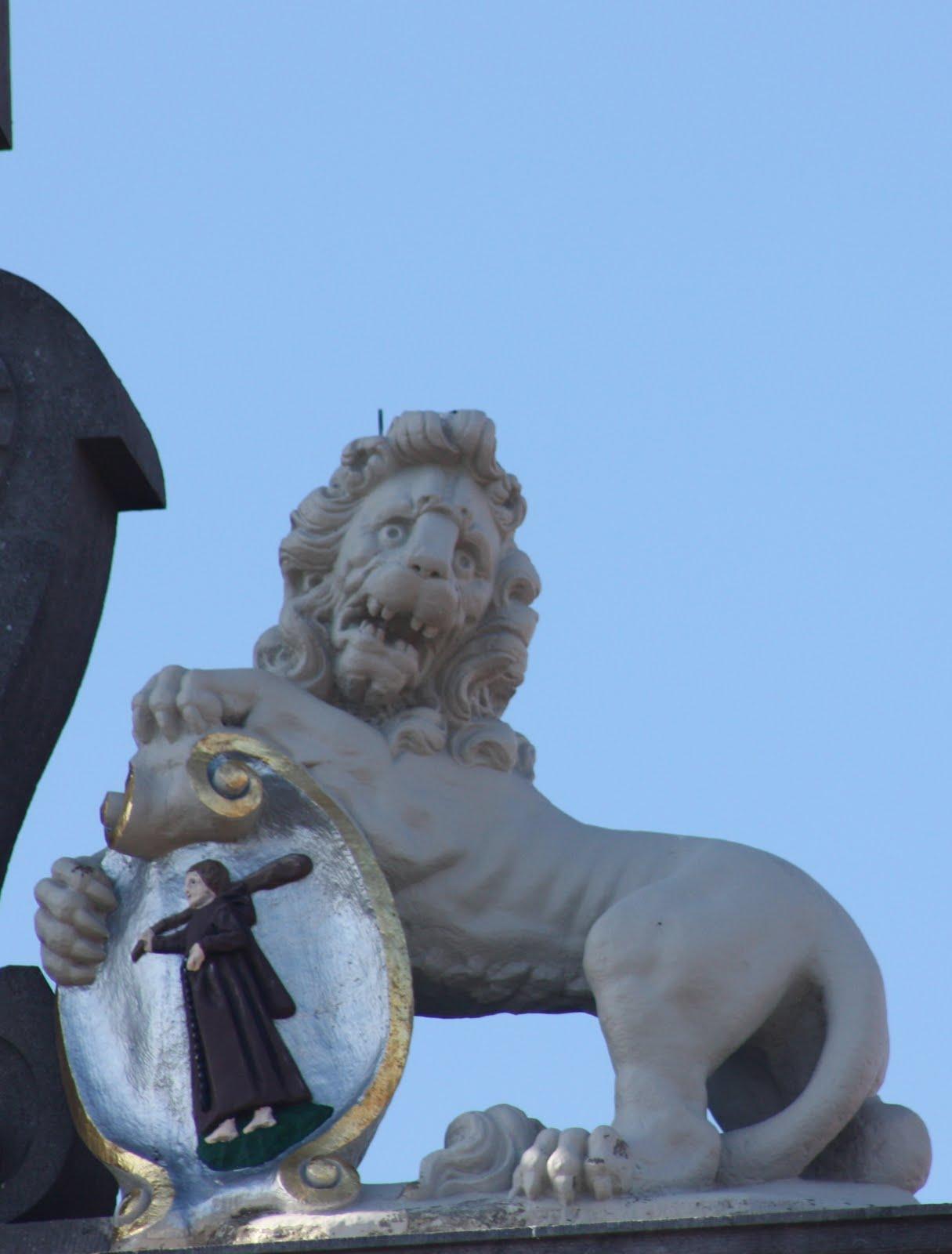 An Unfittie S Guide To Adventurous Travel It S Lion Time