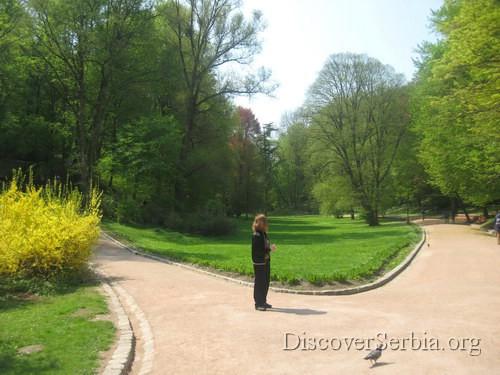 Parkovi