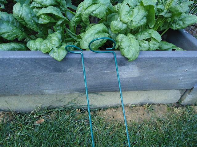 organic garden stake