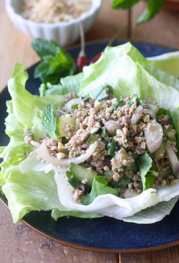 Thai Minced Pork Salad with Lemongrass Ginger Seasoning by SeasonWithSpice.com