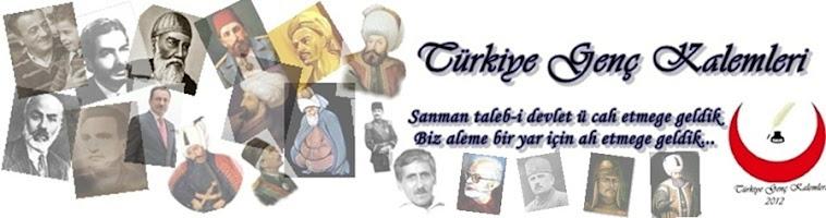 Türkiye Genç Kalemleri